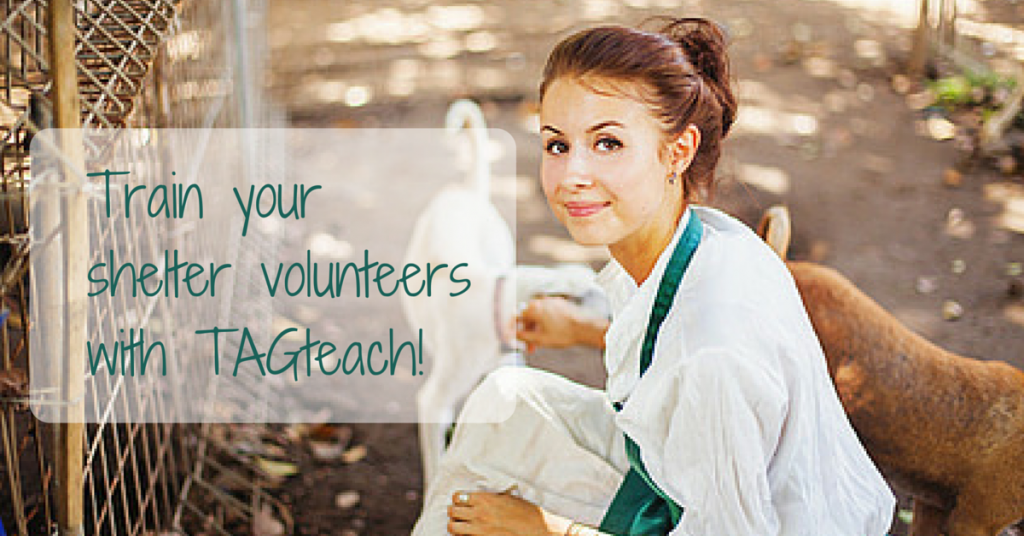 Train yourshelter volunteerswith TAGteach!