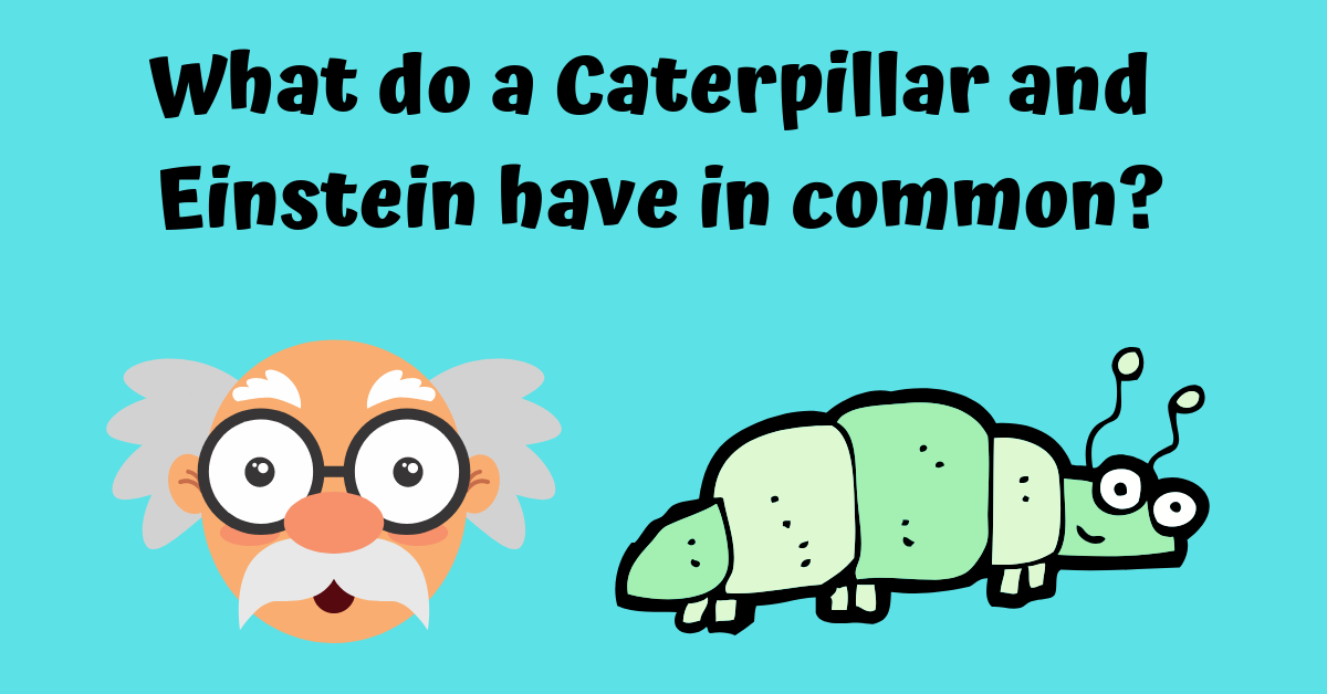 What do a Caterpillar and Einstein have in common_